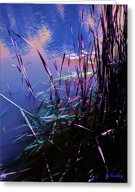Best Sellers -  - Lilly Pad Greeting Cards - Pond Reeds at Sunset Greeting Card by Joanne Smoley