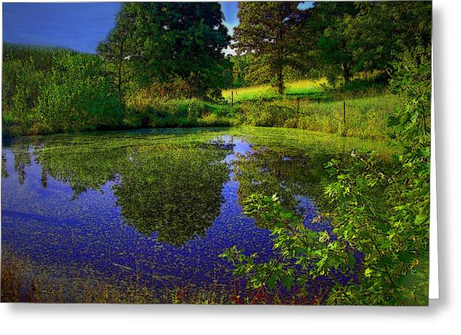 Fall Grass Mixed Media Greeting Cards - Pond Reflections Greeting Card by Julie  Grace
