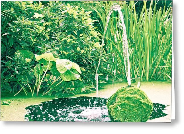 Algae Greeting Cards - Pond Greeting Card by Tom Gowanlock