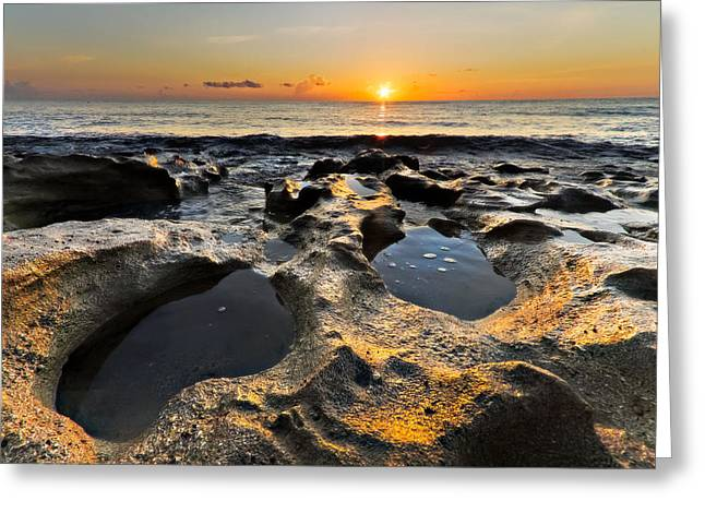 Tidal Photographs Greeting Cards - Pools Greeting Card by Debra and Dave Vanderlaan