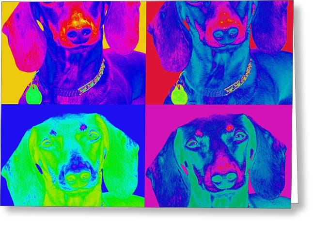 Doxie Greeting Cards - Pop Art Dachshund Greeting Card by Renae Laughner