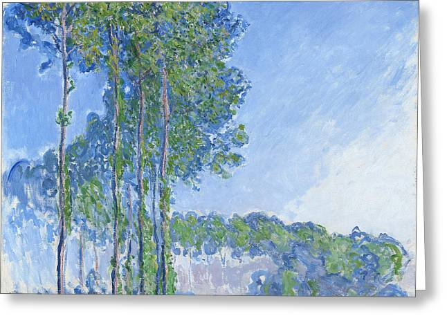 Impressionist Paintings Greeting Cards - Poplars Greeting Card by Claude Monet