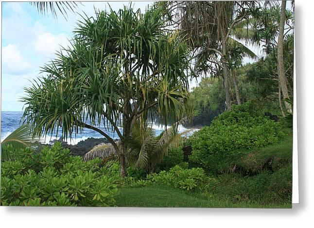 Ourjrny Greeting Cards - Poponi Maui Hawaii Greeting Card by Sharon Mau