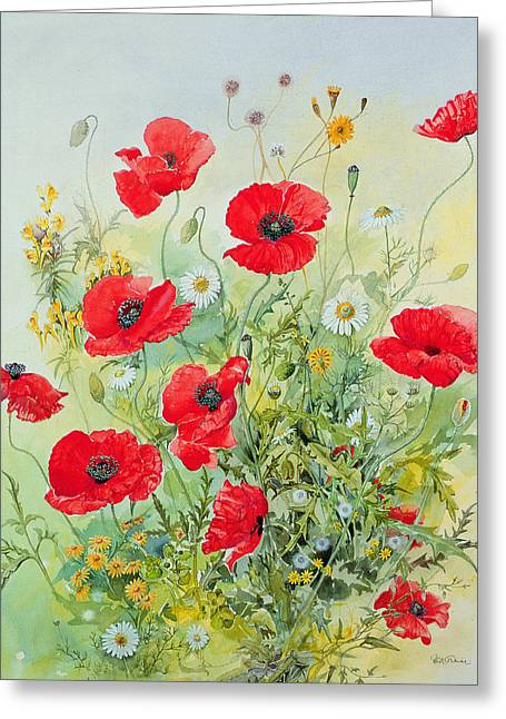 Yellow Flowers Greeting Cards - Poppies and Mayweed Greeting Card by John Gubbins