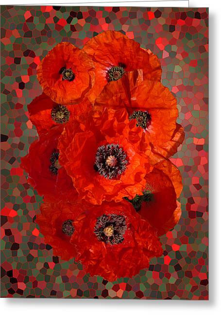 Poppies Greeting Card by Nigel Chaloner
