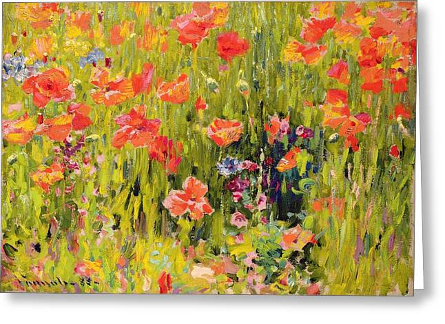 Fields Of Flowers Greeting Cards - Poppies Greeting Card by Robert William Vonnoh