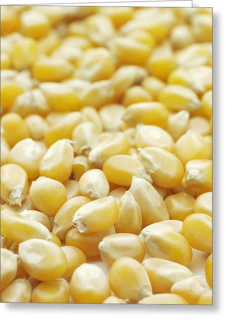 Sweet Corn Greeting Cards - Popping Corn Greeting Card by Jon Stokes
