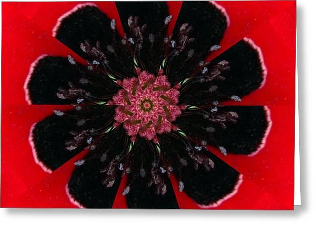 Floral Digital Art Digital Art Greeting Cards - Poppy Greeting Card by Rhonda Barrett