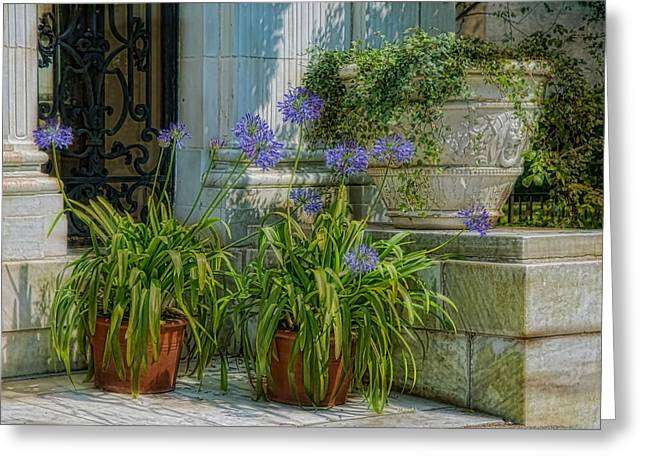 Stone Planter Greeting Cards - Porch Planters Greeting Card by Robin-lee Vieira