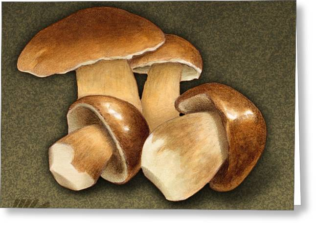 Toadstools Greeting Cards - Porcini Mushrooms Greeting Card by Marshall Robinson