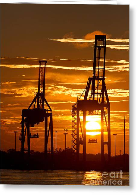 Port Greeting Cards - Port of Charleston Sunset II  Greeting Card by Dustin K Ryan
