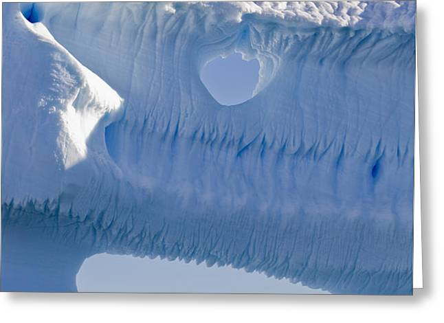 Portion Of A Gigantic Iceberg Greeting Card by Ron Watts