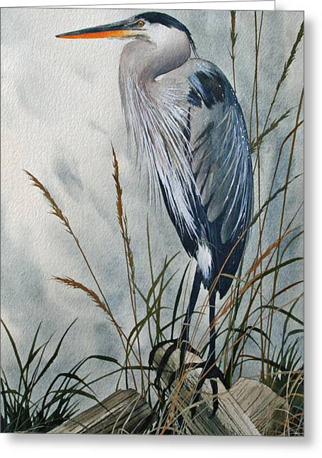 Heron Greeting Cards - Portrait in the Wild Greeting Card by James Williamson