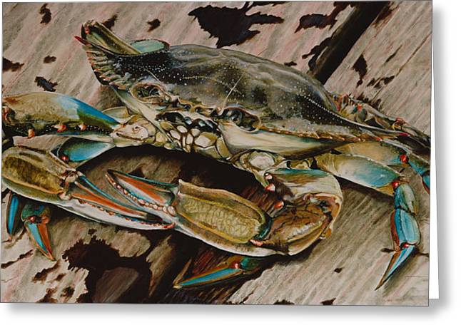 Beach Decor Paintings Greeting Cards - Portrait of a Blue Crab Greeting Card by Rob Dreyer AFC