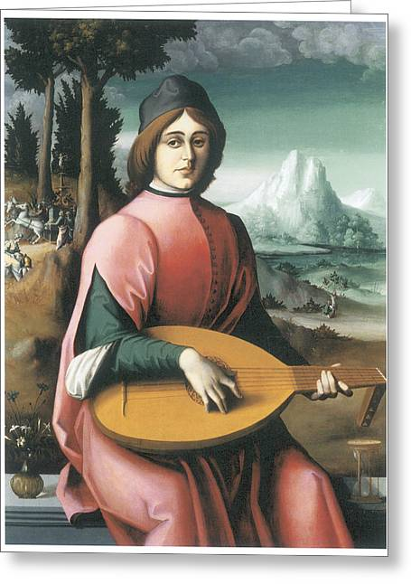 Lute Paintings Greeting Cards - Portrait of a Young Man with a Lute Greeting Card by Bachiacca