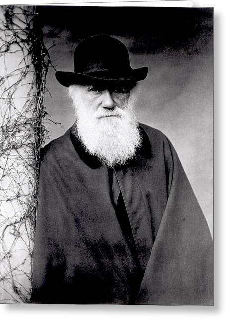 Photo Photography Greeting Cards - Portrait of Charles Darwin Greeting Card by Julia Margaret Cameron