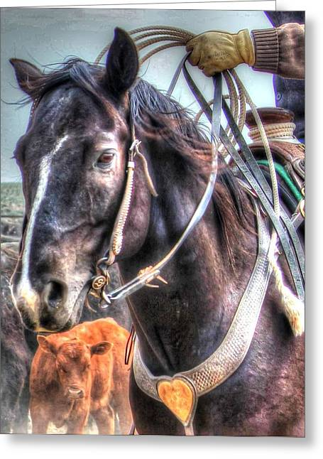 Roping Horse Greeting Cards - Portrait of Hard Work Greeting Card by Vikki Correll