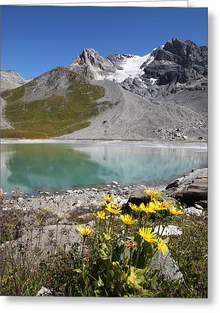 Postcard From Alpes Greeting Card by Mircea Costina Photography