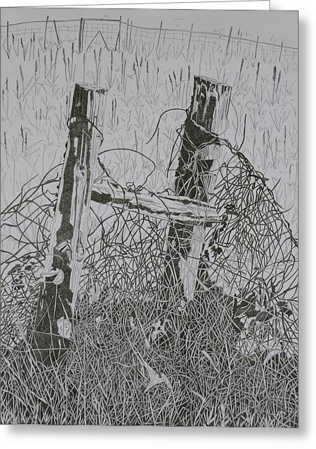 Old Fence Posts Drawings Greeting Cards - Posts and S Barb Wire Greeting Card by Karen Merry