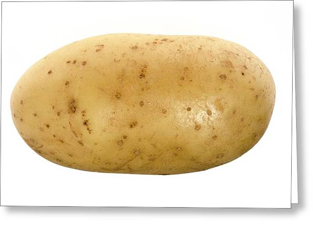 Starchy Greeting Cards - Potato Greeting Card by Victor De Schwanberg
