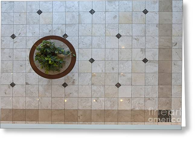 Research Triangle Park Greeting Cards - Potted Plant in Foyer Floor from Above Greeting Card by Will & Deni McIntyre