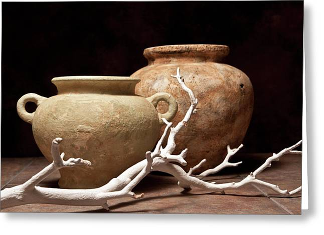 Tree Limbs Greeting Cards - Pottery With Branch I Greeting Card by Tom Mc Nemar