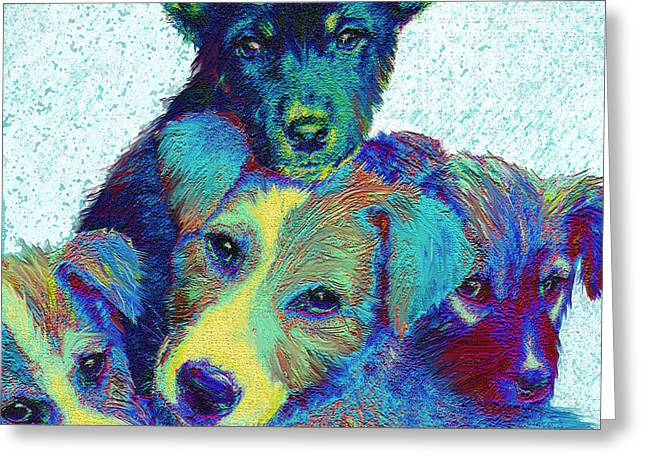 Puppy Digital Art Greeting Cards - Pound Puppies Greeting Card by Jane Schnetlage