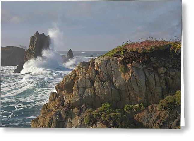 Big Sur California Greeting Cards - Pounding Waves And Rocky Shoreline Greeting Card by Tim Fitzharris