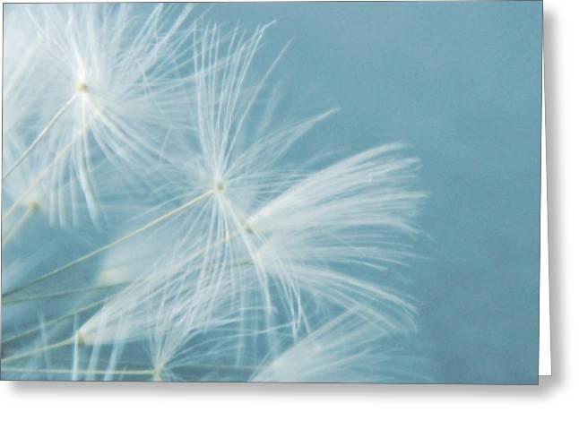 Dandelion Digital Greeting Cards - Powder Blue Greeting Card by Sharon Lisa Clarke