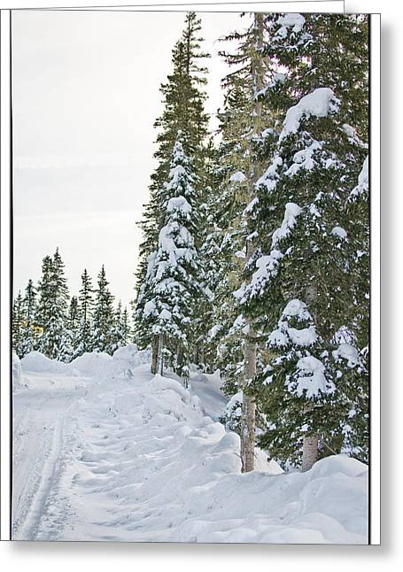 Greeting Cards - Powdery Snow Path Greeting Card by Lisa  Spencer