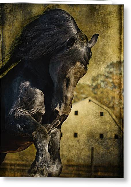Power House Horse D1496 Greeting Card by Wes and Dotty Weber