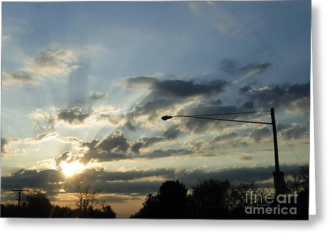 Flora Photographs Greeting Cards - Power Lines Greeting Card by Trish Hale