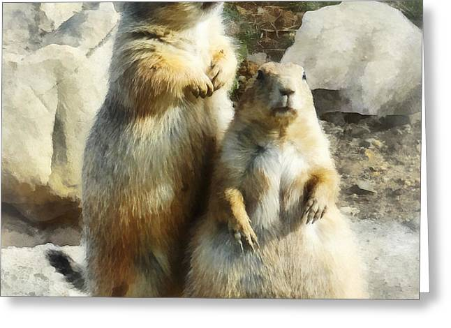 Prairie Dog Formal Portrait Greeting Card by Susan Savad