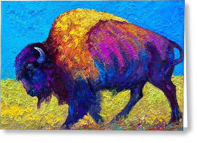 Bison Greeting Cards - Prairie Dusk Greeting Card by Marion Rose