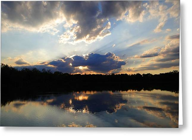 Pond In Park Greeting Cards - Prairie Oaks June Reflections 3 Greeting Card by Beth Akerman