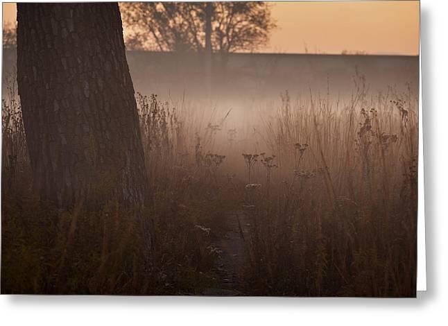 Prairies Greeting Cards - Prairie Pre Dawn Greeting Card by Steve Gadomski