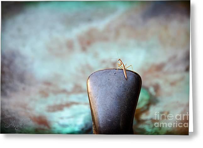 Praying Mantis Greeting Cards - Praying For Water 2 Greeting Card by Andee Design