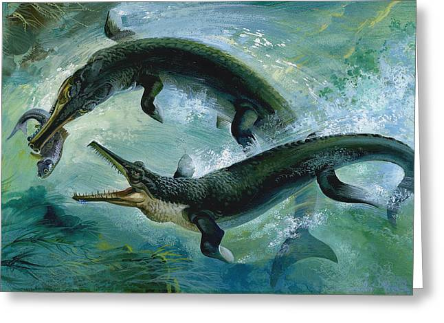Sea Creature Greeting Cards - Pre-historic Crocodiles Eating a Fish Greeting Card by Unknown