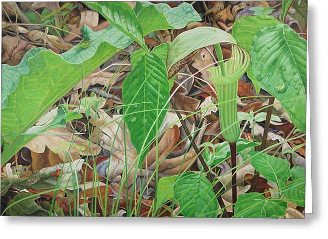 - Harlan Greeting Cards - Preacher in the Woods Greeting Card by - Harlan