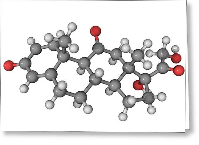 Corticosteroid Greeting Cards - Prednisone Corticosteroid Drug Molecule Greeting Card by Laguna Design