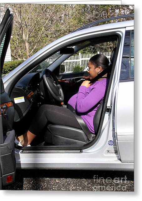 Black Carbon Greeting Cards - Pregnant Woman Putting On Seatbelt Greeting Card by Photo Researchers