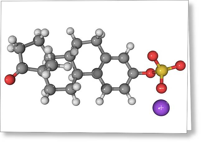 Molecular Biology Greeting Cards - Premarin Hrt Drug Molecule Greeting Card by Laguna Design