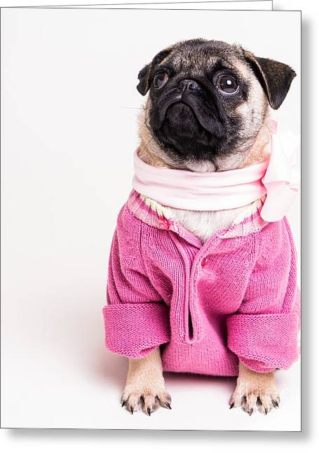 Teen Greeting Cards - Pretty In Pink Greeting Card by Edward Fielding