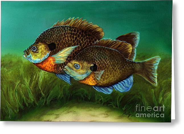 Bluegill Greeting Cards - Pretty Little Panfish Greeting Card by Kathleen Kelly Thompson