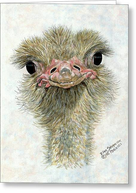 Ostrich Greeting Cards - Pretty Me Greeting Card by Ellen Strope