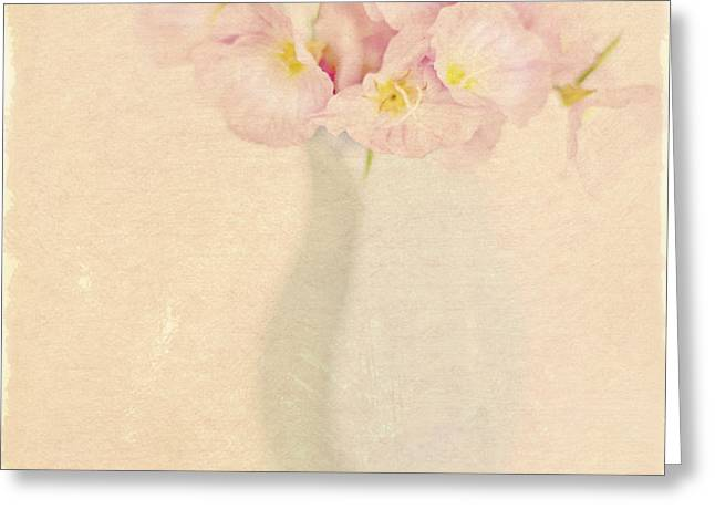 Pretty Primroses Greeting Card by Linde Townsend