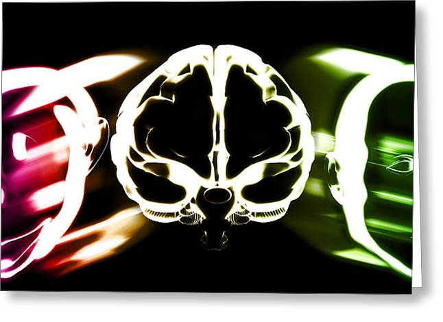 Cognition Greeting Cards - Primate Brain Evolution Greeting Card by Christian Darkin