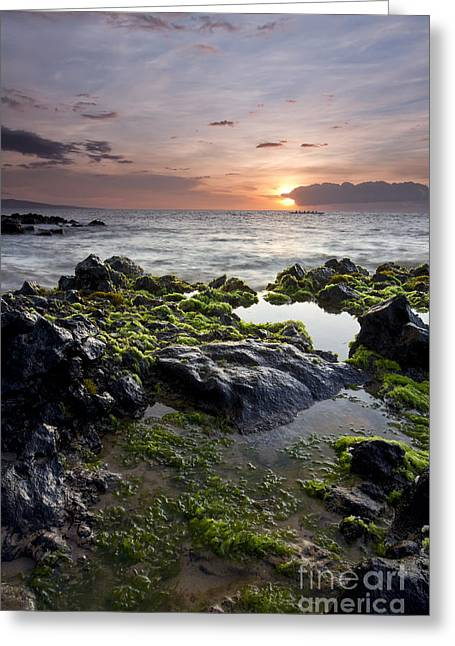 Canoe Greeting Cards - Primordial Hawaii Greeting Card by Dustin K Ryan