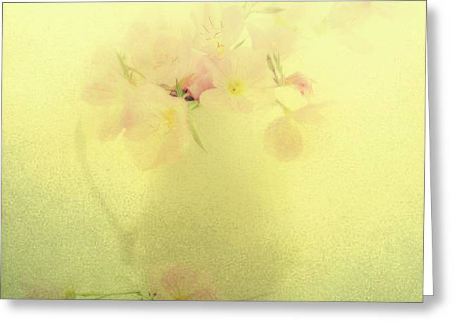 Primrose In Pastel Greeting Card by Linde Townsend