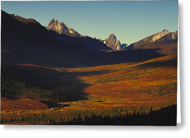 Tombstone Territorial Park Greeting Cards - Pristine Valley In Tombstone Greeting Card by Nick Norman